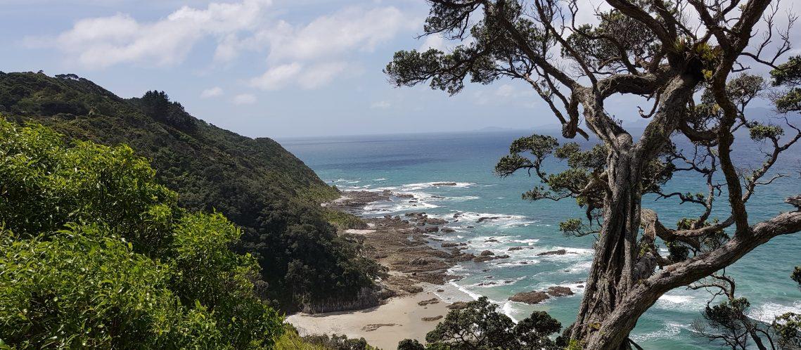 Mangawhai Heads Coastal Walkway