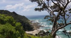 Mangawhai Heads Coastal Walkway