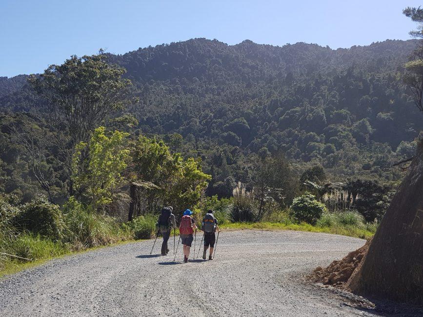 Pleasant road walking Te Araroa Trail