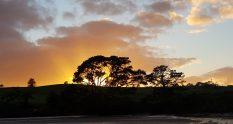 Te Araroa Trail Day 27 - Okura Estuary at sunrise