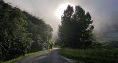 Te Araroa Trail Whanganui river