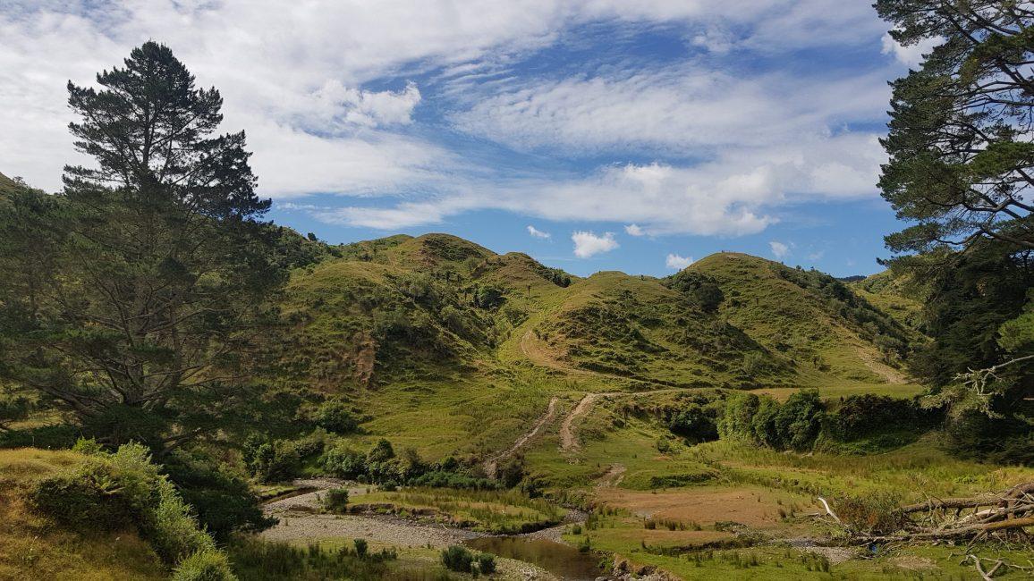 Te Araroa Trail Makahika Valley Tararuas
