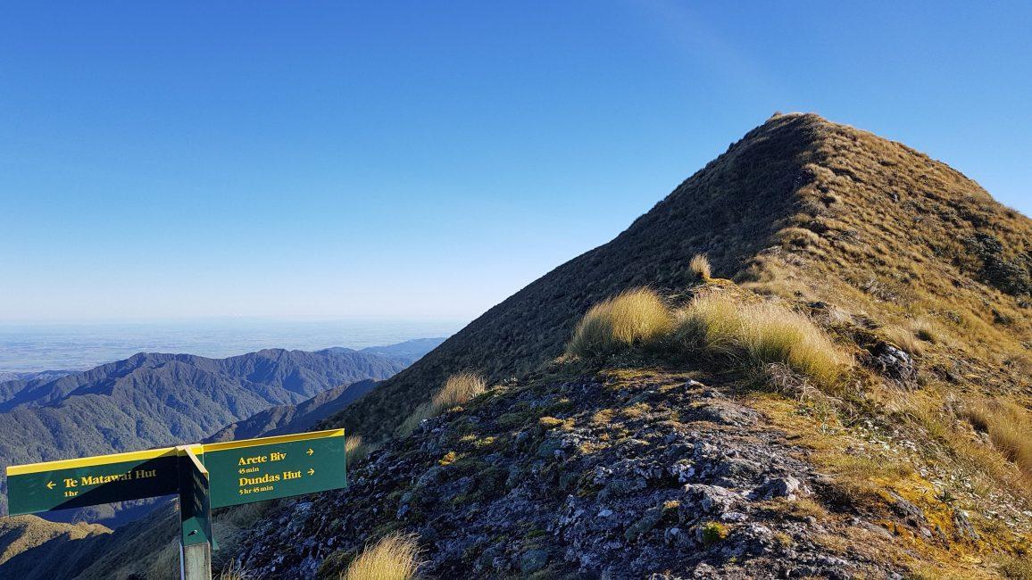 Te Araroa Trail Pukematawai ridge Tararuas