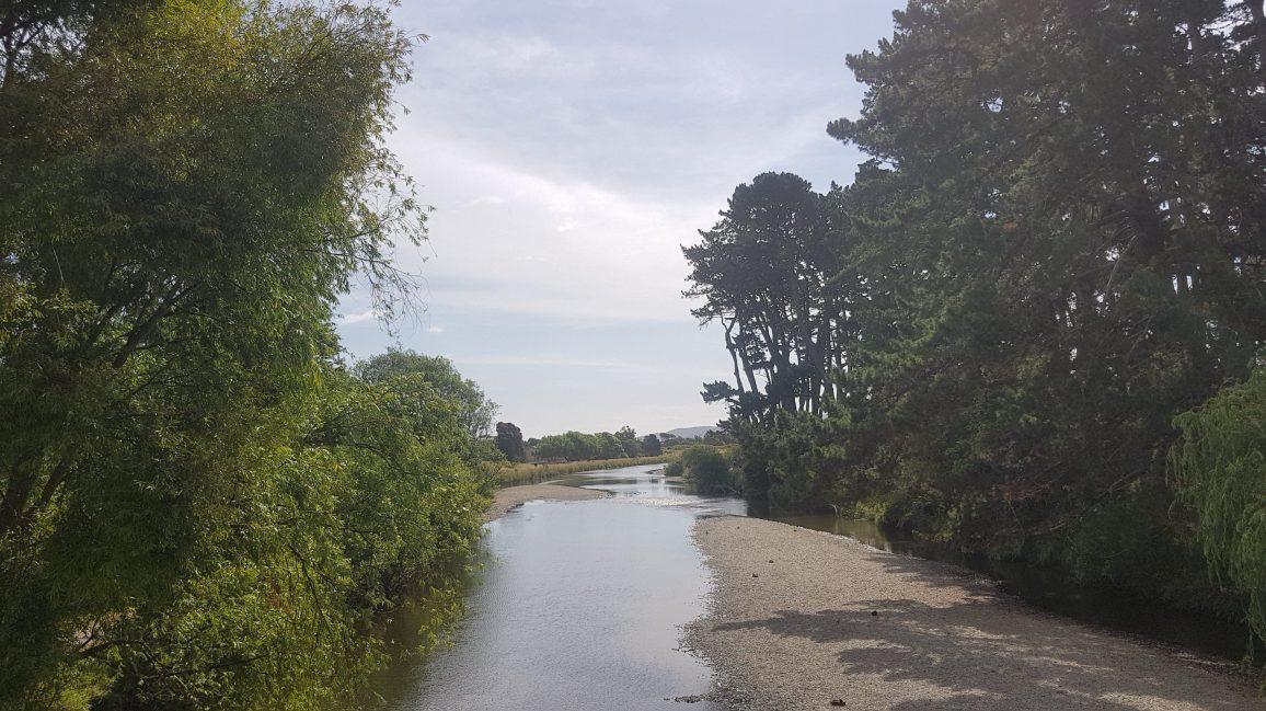 Te Araroa Trail Day 66 - Waikanae river trail
