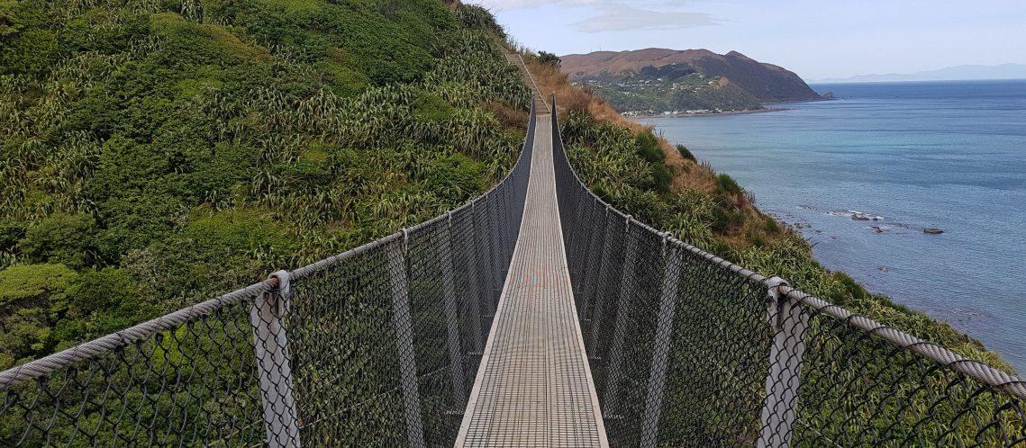 Te Araroa Trail Paekakeriki Escarpment Track