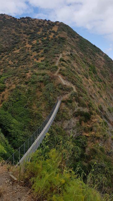 Te Araroa Trail Day 68 - Bridges on the Paekakeriki Escarpment Track