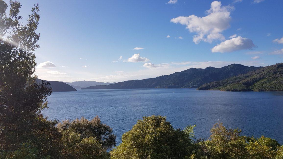 Te Araroa Trail Day 76 - Queen Charlotte track views