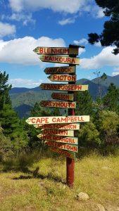 Te Araroa Trail Day 76 - Queen Charlotte track signage
