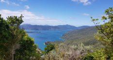 Te Araroa Trail Queen Charlotte Track