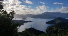 Te Araroa Trail Day 77 - Queen Charlotte track