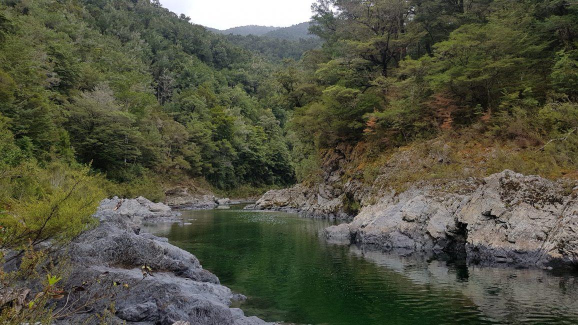 Te Araroa Trail Day 80 - Emerald Pools, Pelorous Bridge track