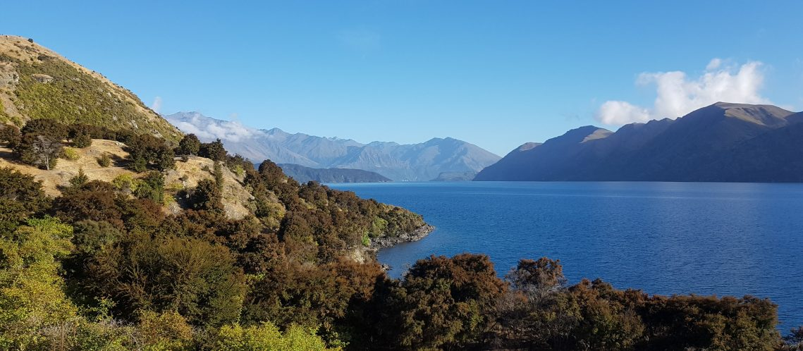 Te Araroa Trail Day 98 - Lake Wanaka
