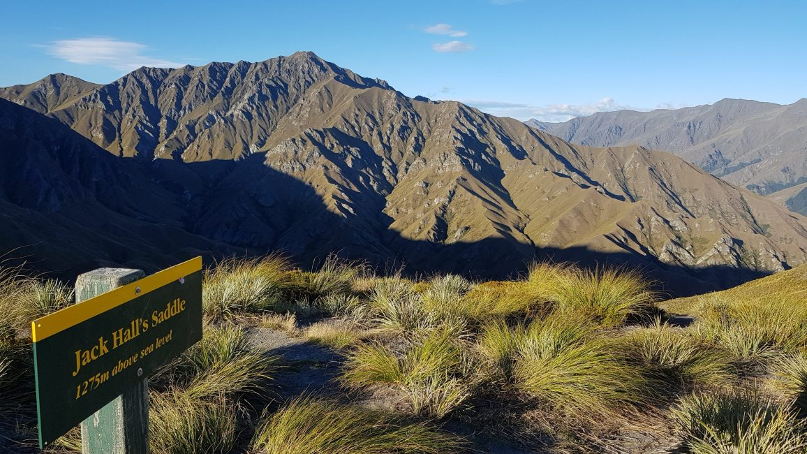 Te Araroa Trail Day 99 - Jack Hall's Saddle, Motatapu Track