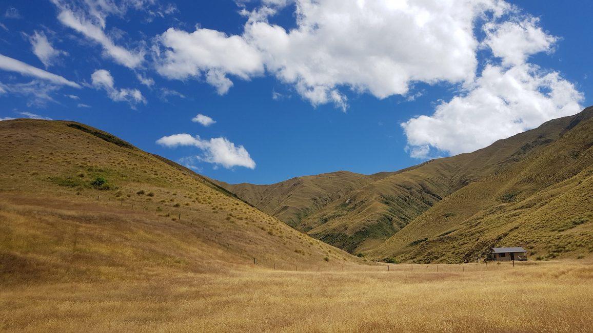 Te Araroa Trail Day 99 - Roses hut