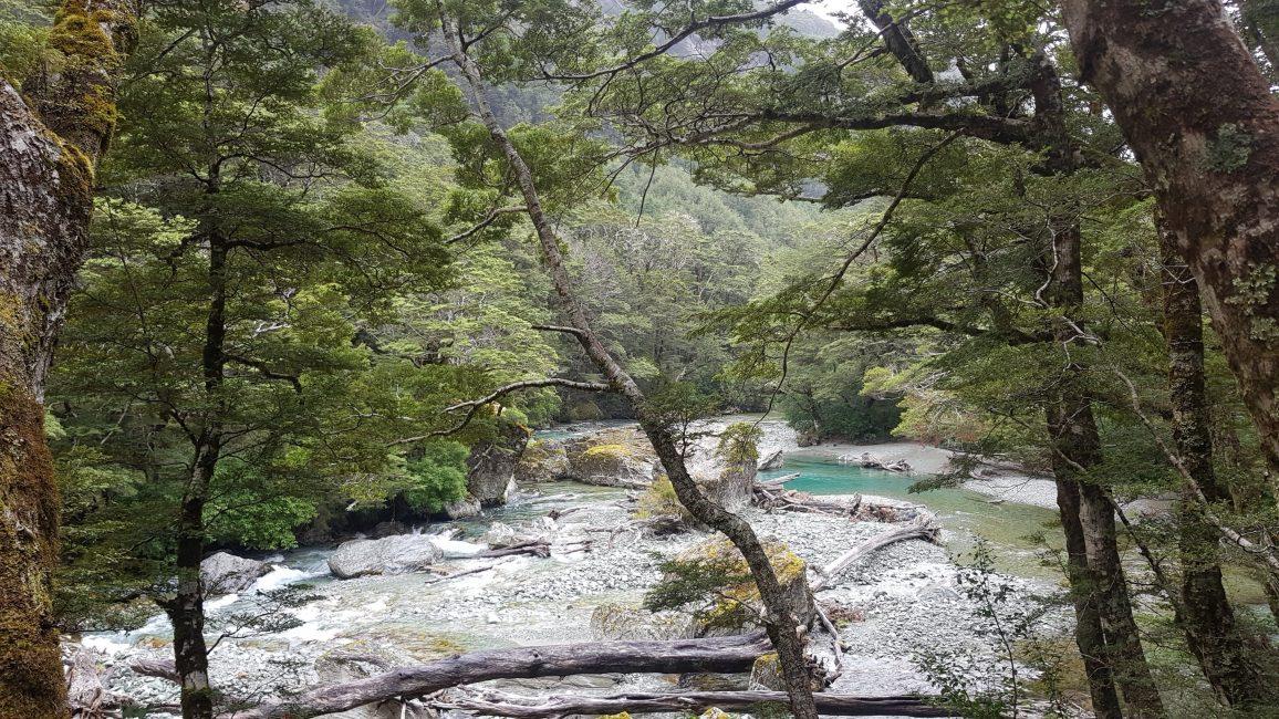 Te Araroa Trail Day 103 - A beautiful start to the Routeburn Track