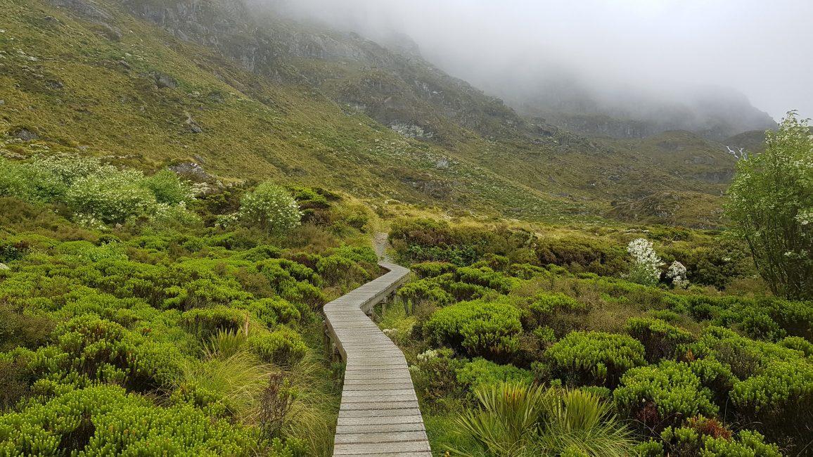 Te Araroa Trail Day 103 - Boardwalk provided