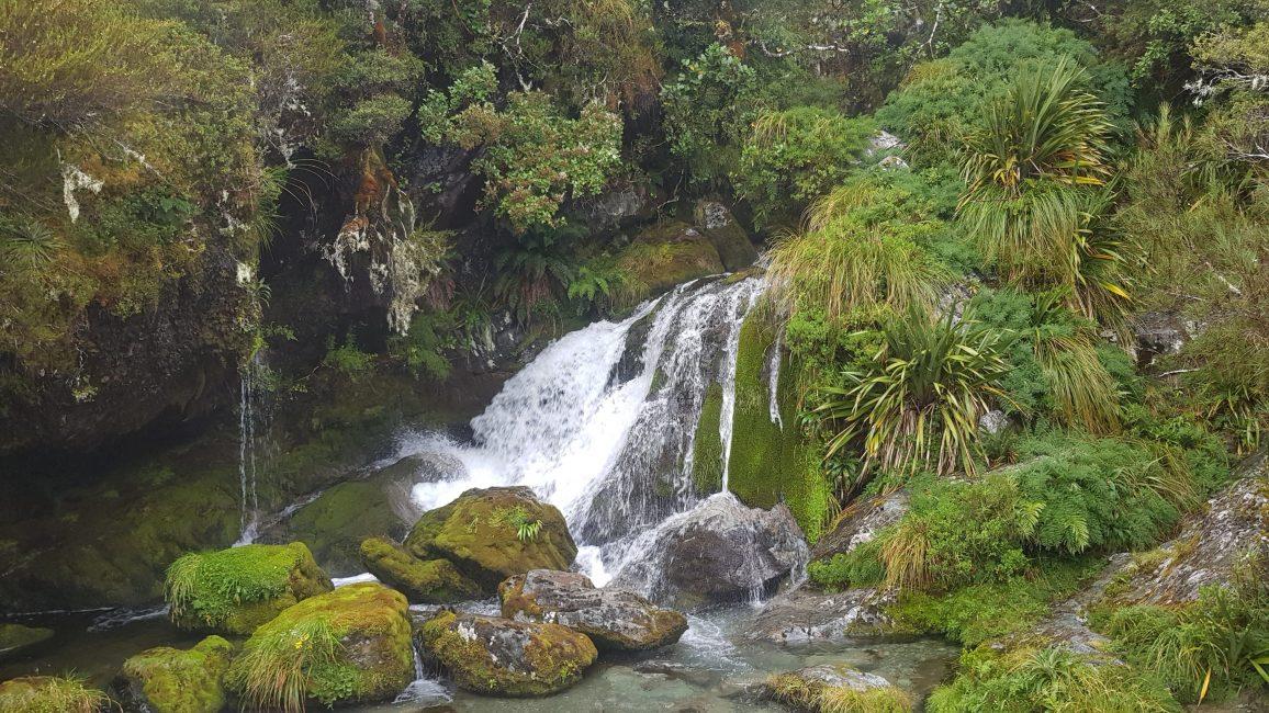 Te Araroa Trail Day 103 - Routeburn Track