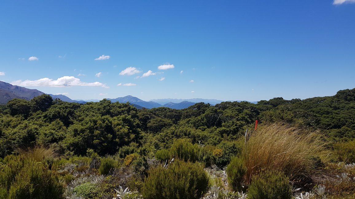 Te Araroa Trail Day 109 - On the Takitimu Tops