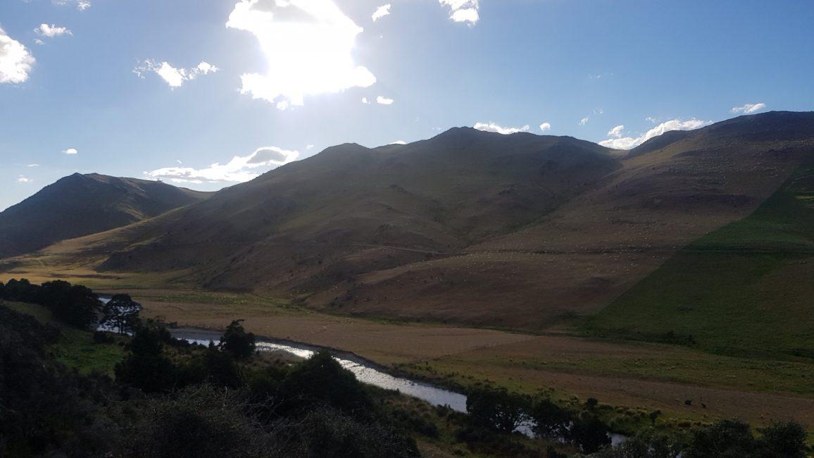 Te Araroa Trail Day 110 - Early start towards Linton Station