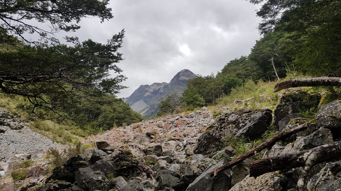 Te Araroa Trail Day 123 - West Sabine hut to Blue Lake hut