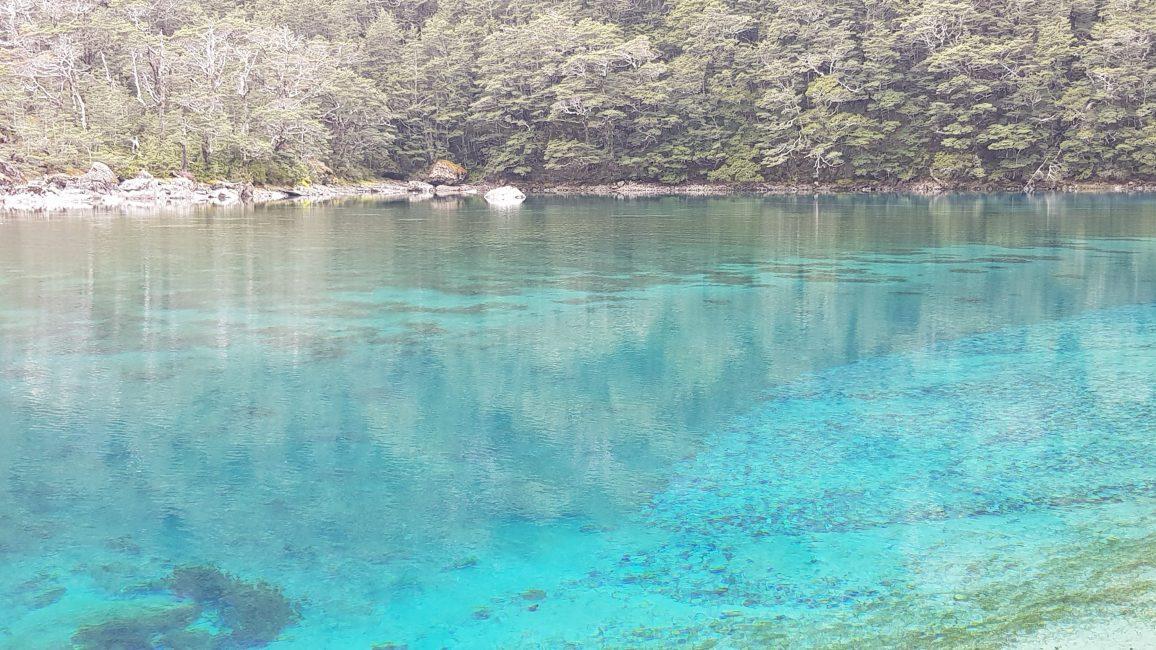 Te Araroa Trail Day 123 - Blue lake