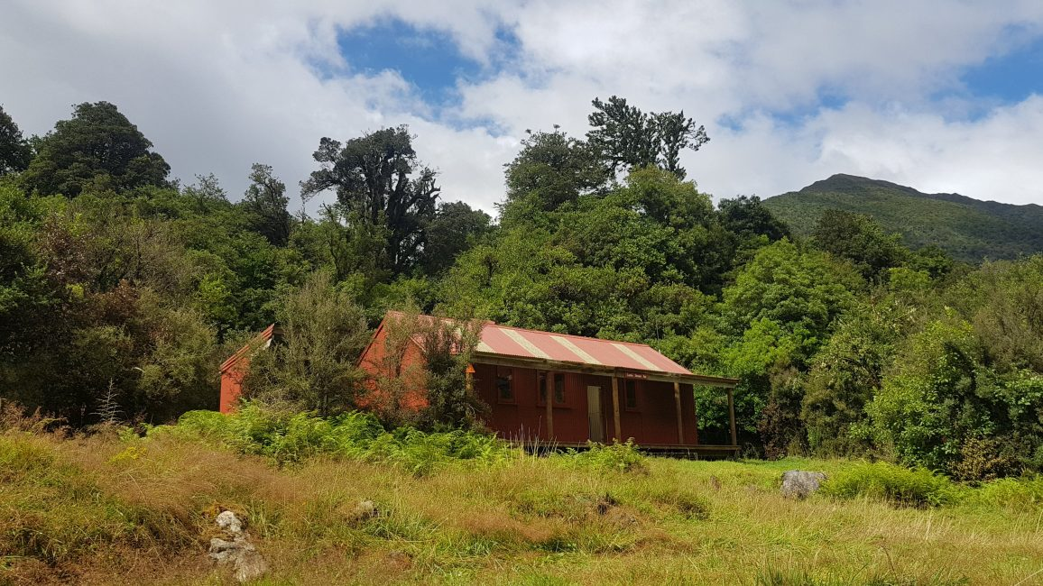 Te Araroa Trail Day 130 - Locke Stream hut