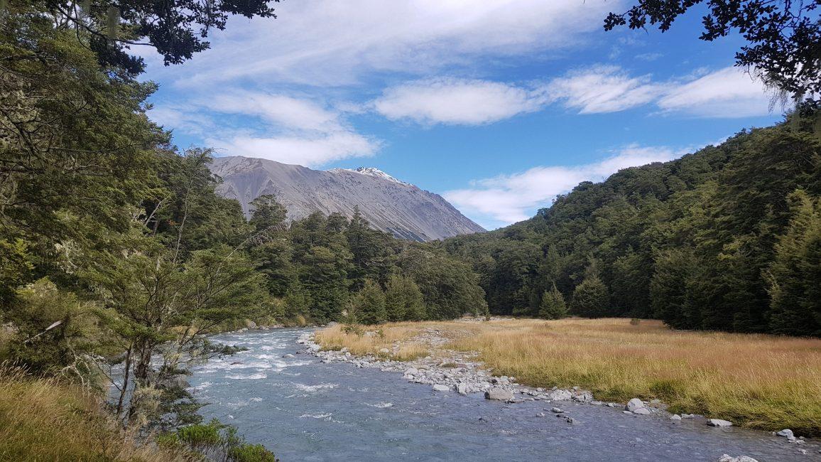 Te Araroa Trail Day 134 - Harper River track Craigeburn Forest