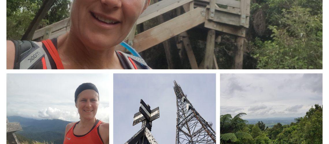 Tinytramper on Te Aroha Kakepuke and Hakarimatat summits