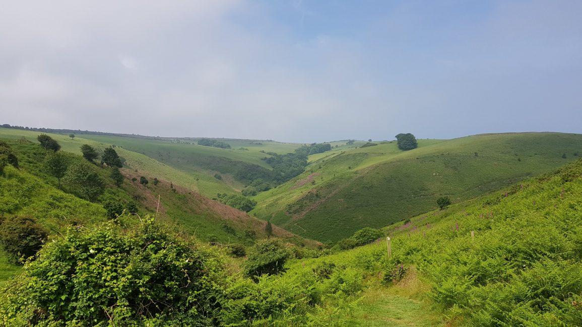 Inland towards Exmoor