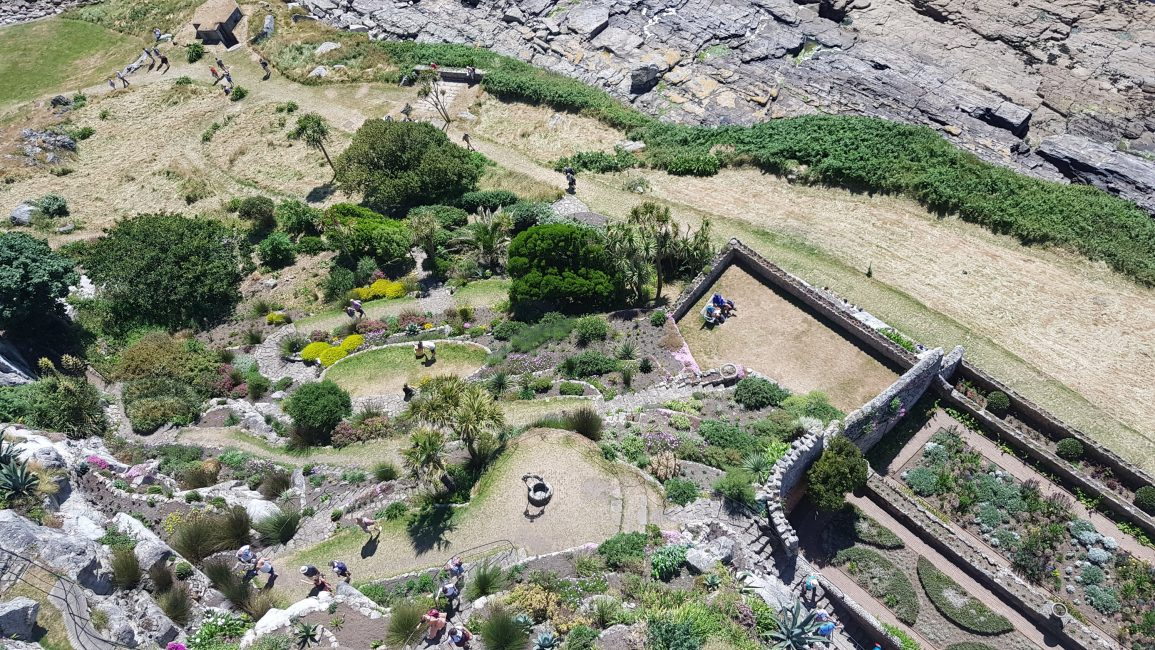 The gardens from above