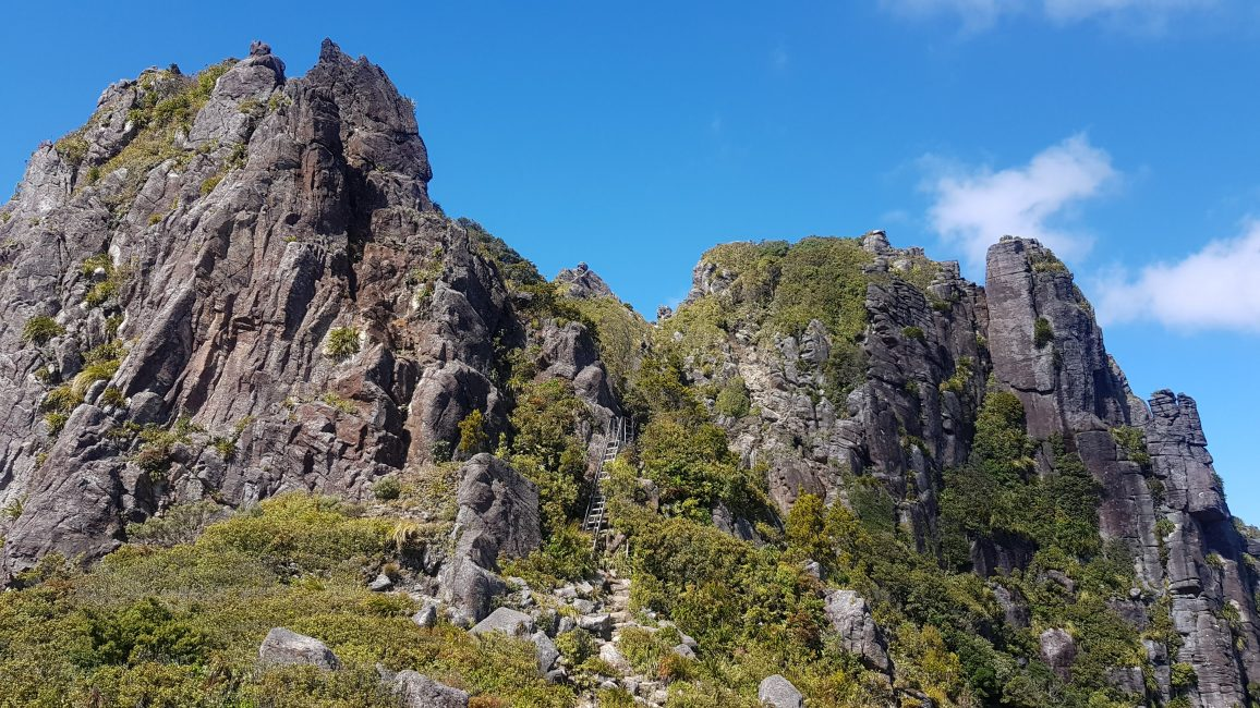 Pinnacles ladders