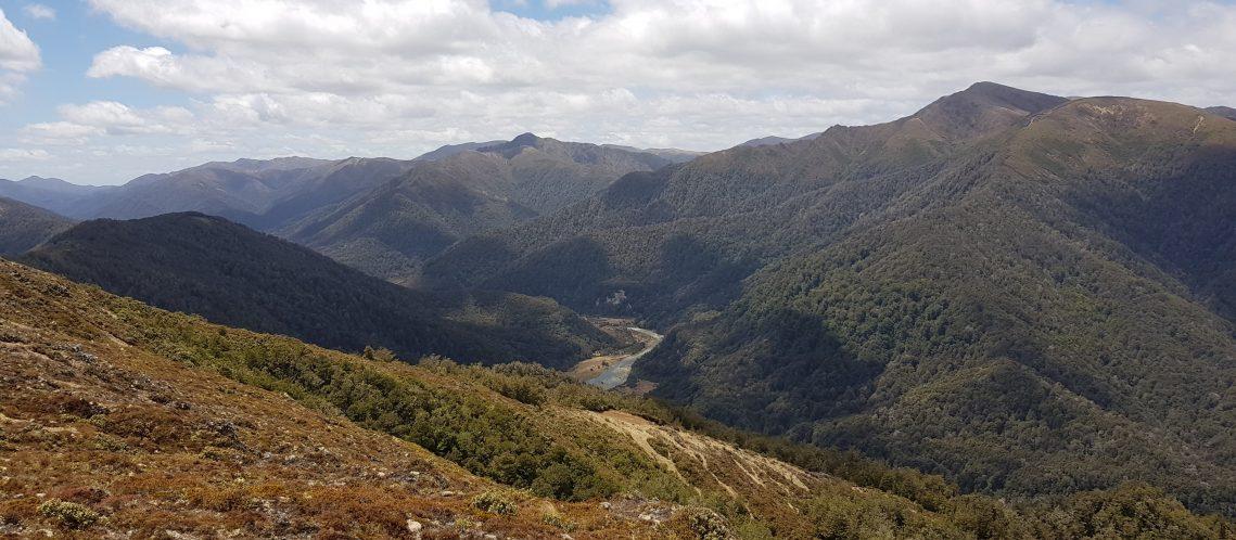 Waipakihi Valley