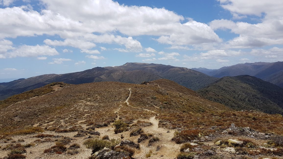 Across the tops at Urchin