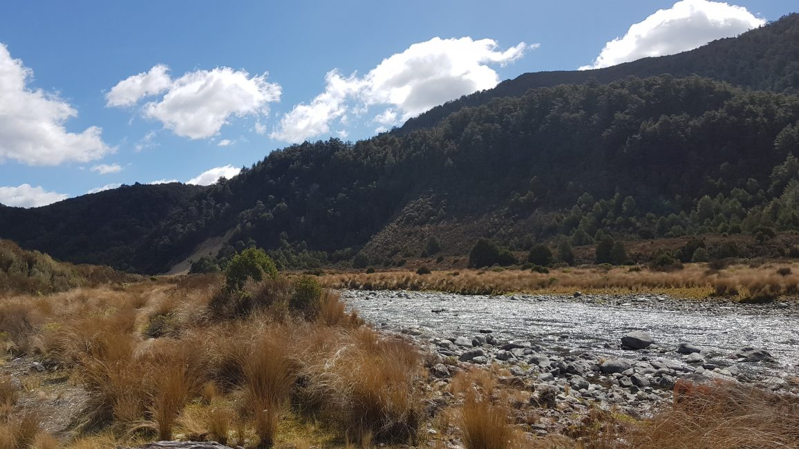 The Waipakihi river