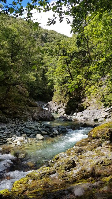 Following the Wairoa river