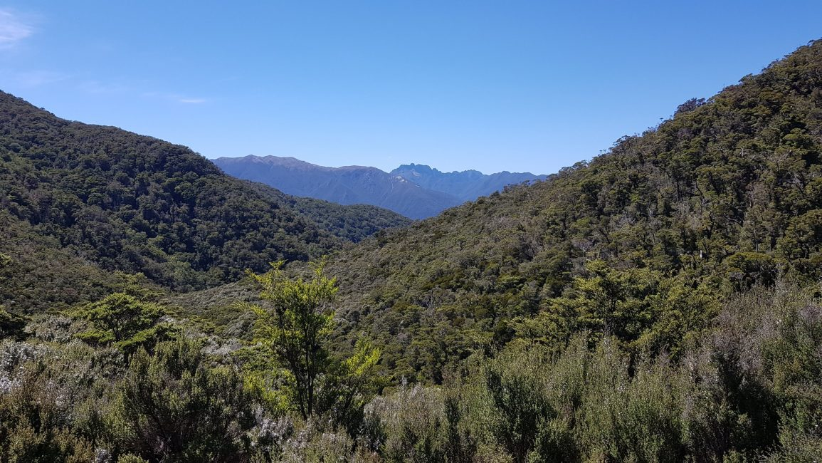 The Douglas Range in the distance