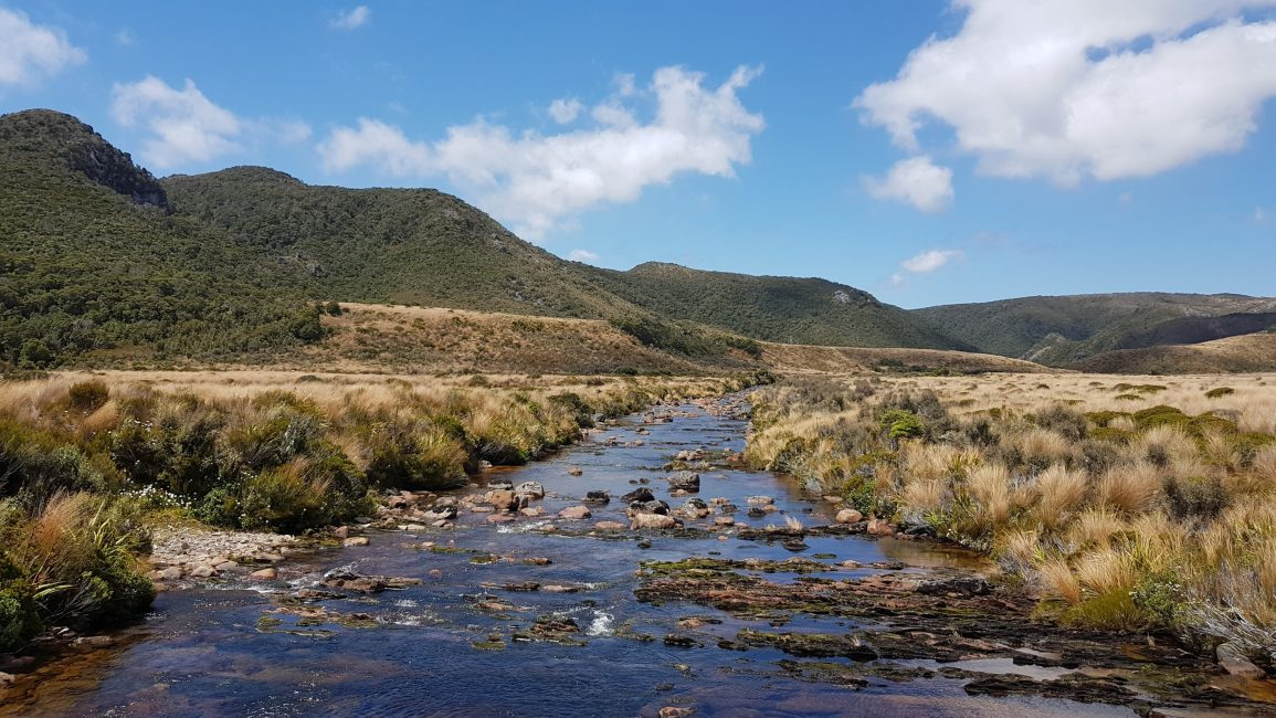 One of many beautiful, bridged river crossings - Heaphy Track