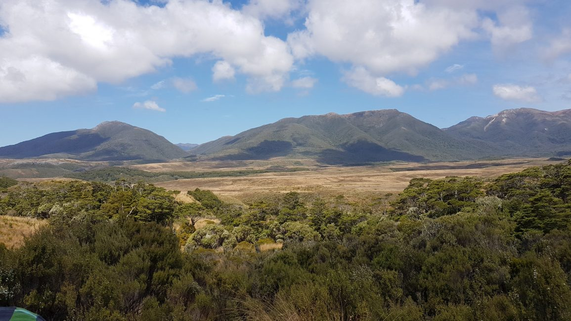 The view from our camping platform at Saxon hut - Heaphy Track