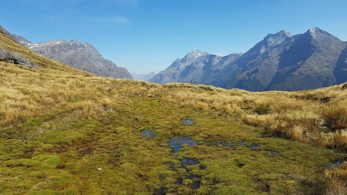 Towards the Rock Burn Valley