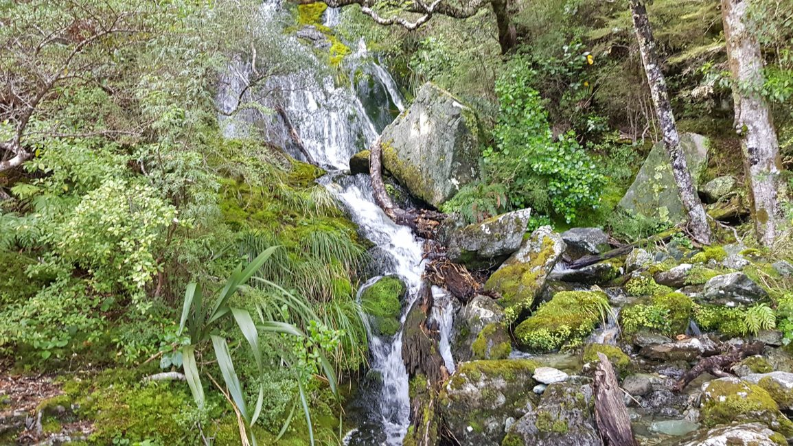 Waterfalls on the Sugarloaf Rockburn Sylvan loop