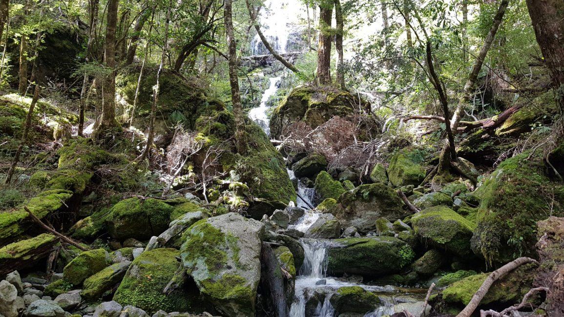 More pretty streams to cross