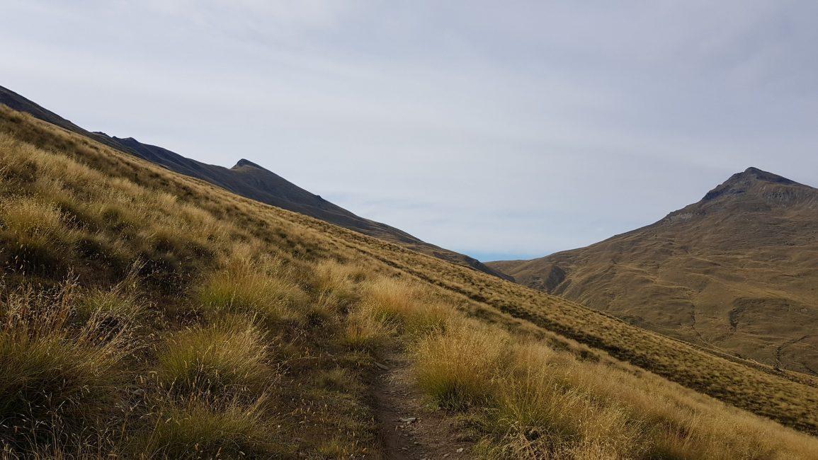 On the flanks of the Bowen Peak mountain