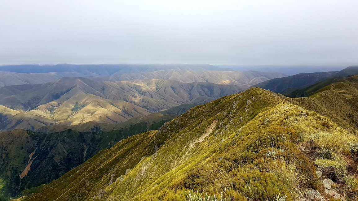 Towards middle Mt Peel