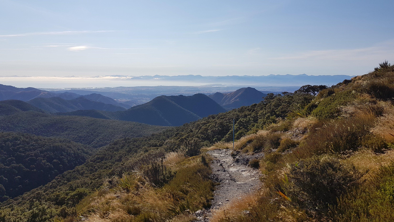 Great views across the Tasman district