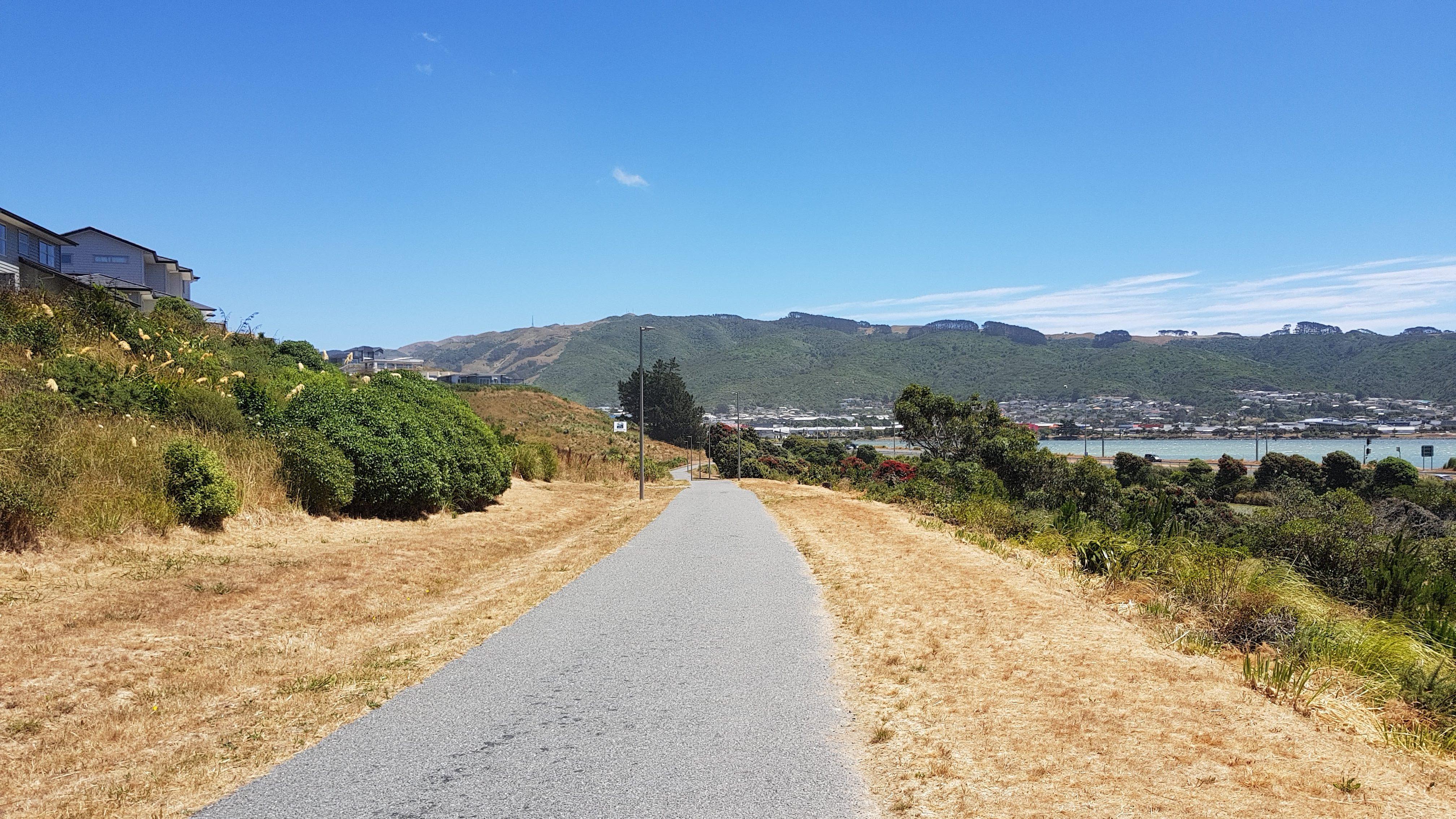 Te Araroa Trail Road walking to Porirua