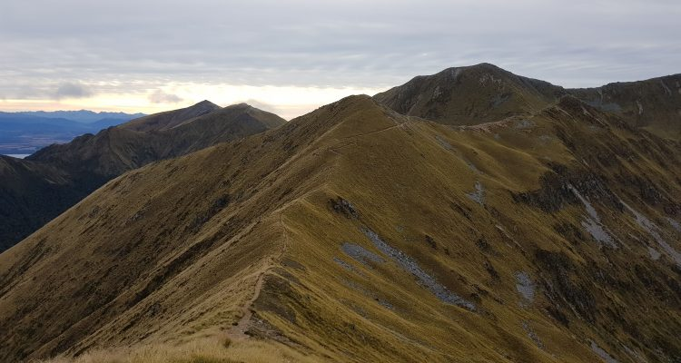 Walking the ridge on the Kepler Track