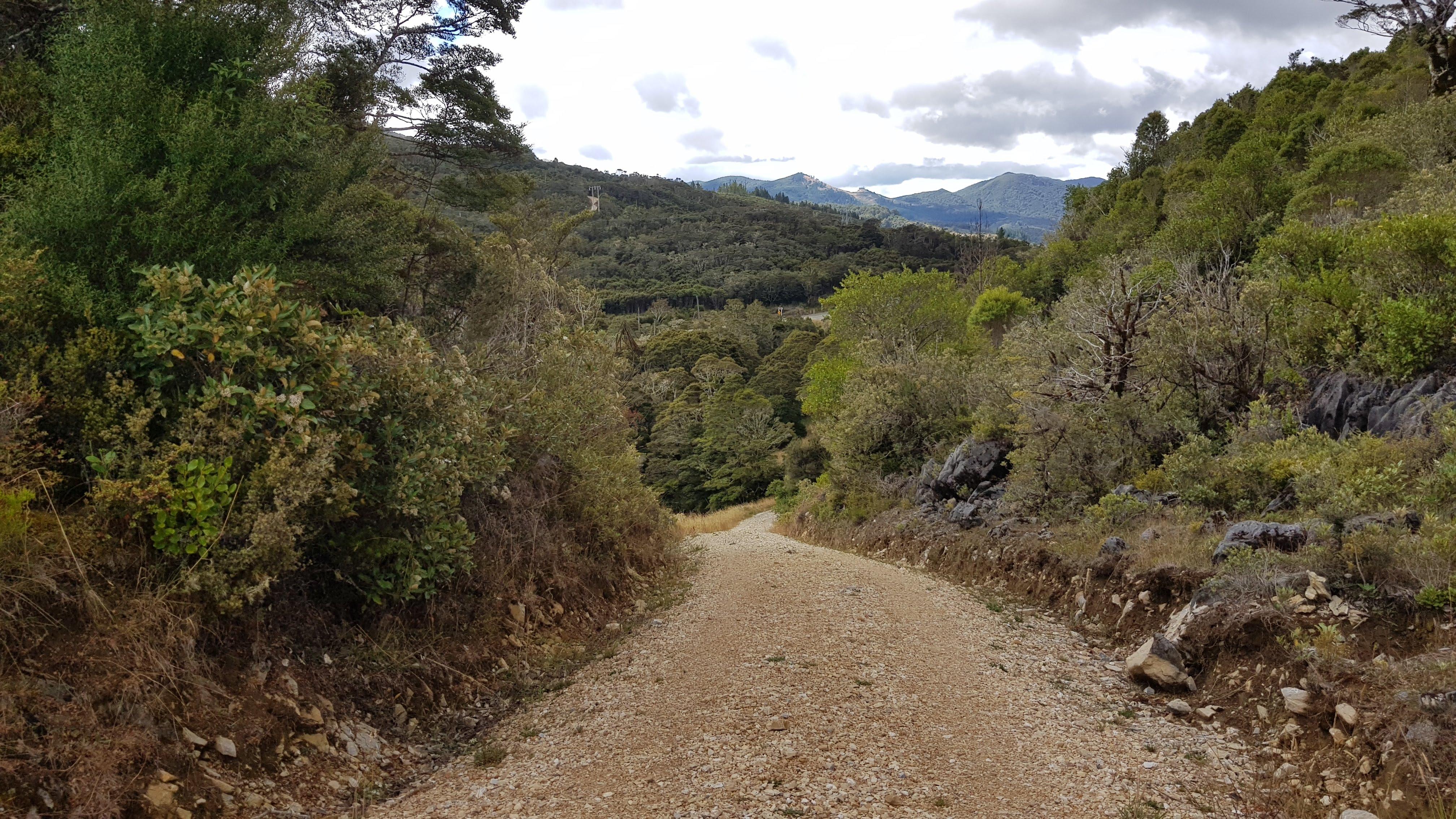 Starting the Takaka Hill Walkway
