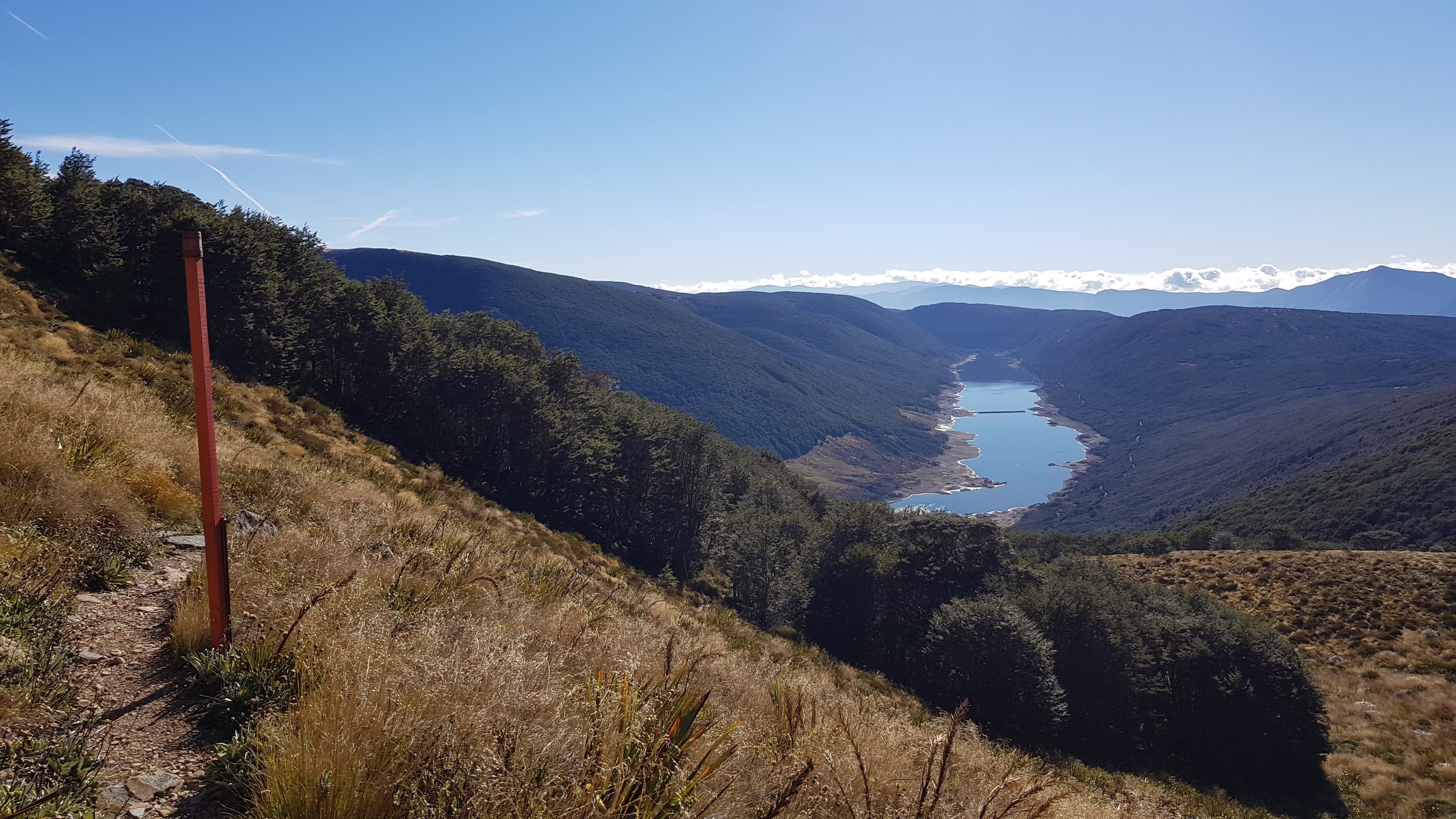 Views of the Cobb valley reservoir from the Lake Peel track Kahurangi National Park
