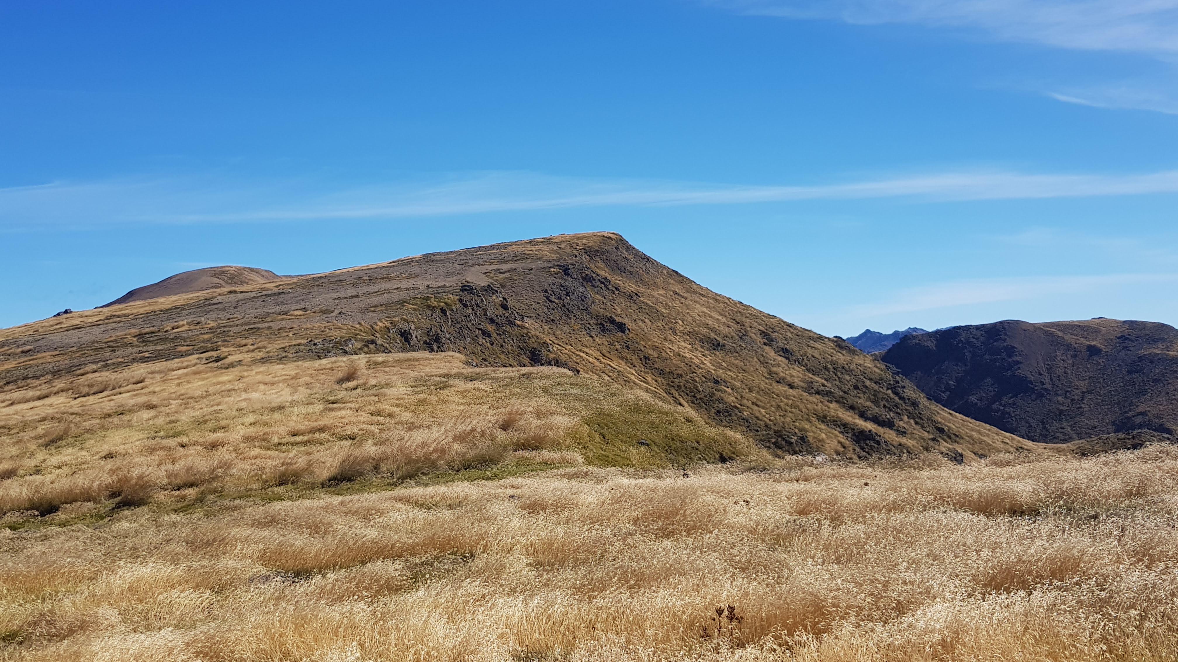 Grasslands on the tops towards Mount Peel Kahurangi National Park