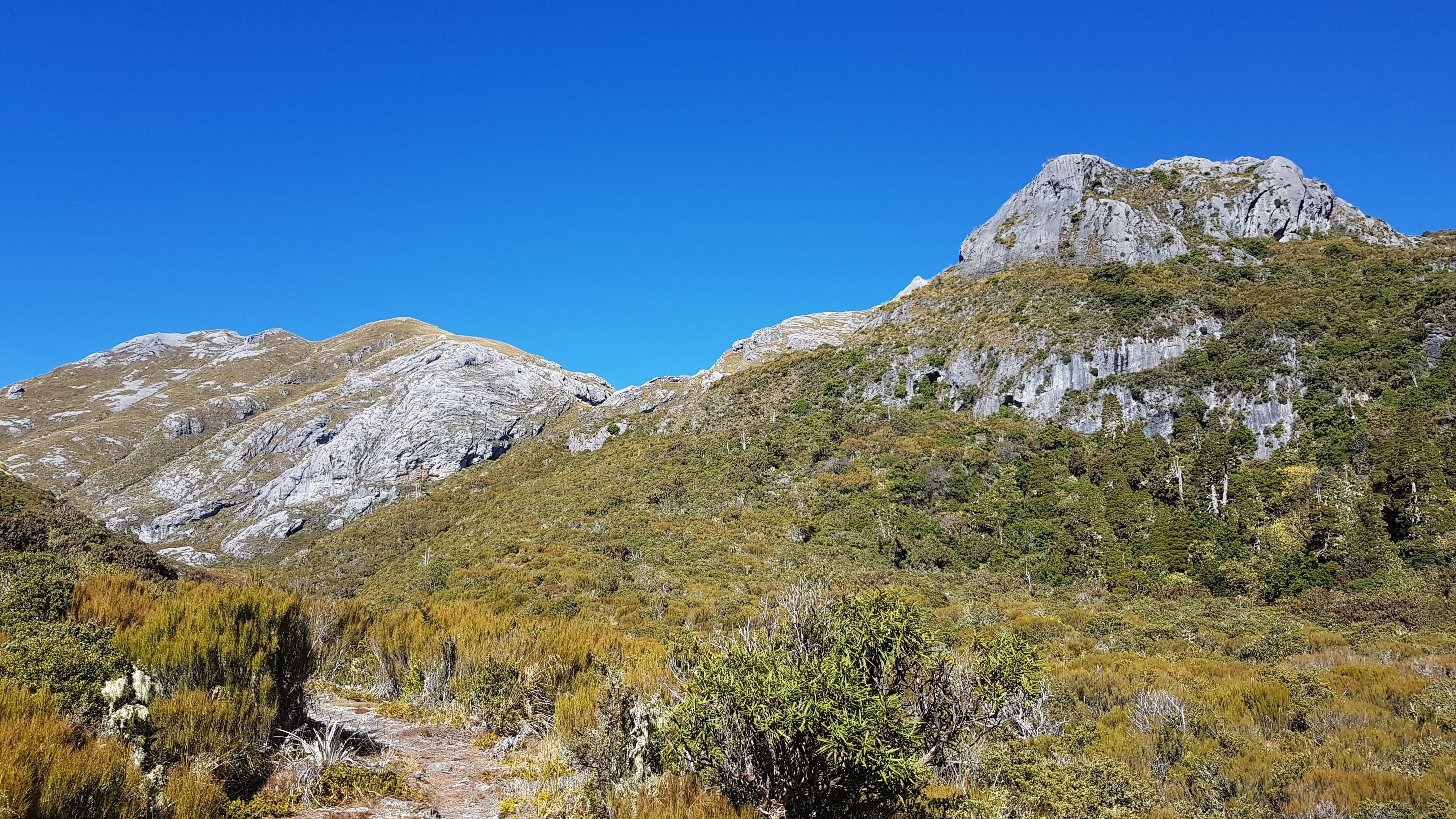 Beautiful open trail following Blue Creek